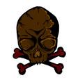 skull face vector image