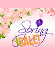 sale poster for spring holiday discount vector image