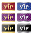 vip gift cards vector image