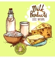 Milk Product Still Life Concept vector image