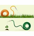 garden hose vector image