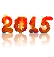 burning 2015 year vector image vector image