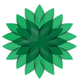 Green Wheel Flower isolated vector image