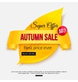 Autumn sale banner isolated on white background vector image