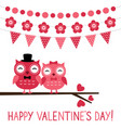 cute owl couple valentine card vector image