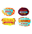 discount 25 off special price vector image