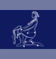 zodiac sign - aquarius vector image