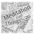 meditation center Word Cloud Concept vector image