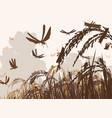 swarming locusts vector image