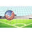 A soccer ball with the US flag vector image