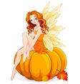 Pumpkin Fairy vector image vector image