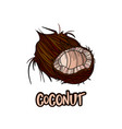 coconut fruits poster in cartoon style vector image