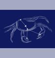 zodiac sign - cancer vector image