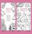 sketch of vegetarian fruits pineapple and plum vector image