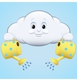 icon clouds with watering vector image