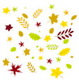 leaf of autumn leaves vector image