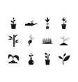 plant icon set simple style vector image