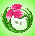 with tulip flowers vector image