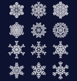 white snowflakes 2 vector image