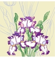 Background with white blue irises vector image