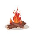 burning bonifire colorful vector image