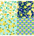 set of background with lime lemon slices and vector image