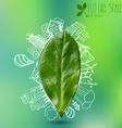 green leave with doodles about eco lifestyle vector image