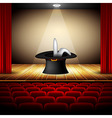 hat magician on stage vector image