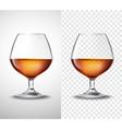 Wine glass With Alcohol Transparent Banners vector image
