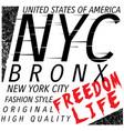new york city bronx grunge background typography vector image