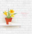 shabby chic brick wall with daffodils in pot for vector image