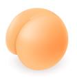 Buttocks vector image