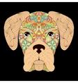 head of dog on black background vector image