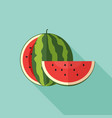 watermelon with cut slice vector image