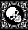 bandana pattern with skull vector image