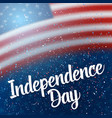 the day of independence of usa poster vector image