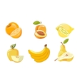 yellow fruits collection isolated over vector image
