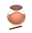 Jar of Cinnamon Powder on White Background vector image