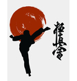 The the man shows karate vector image