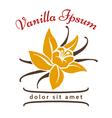 Vanilla dessert flavor logo Vanillas aromatic vector image