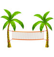 volleyball net on coconut trees vector image vector image