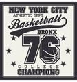Basketball champion t-shirt vector image vector image