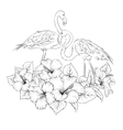 Flamingo background design vector image