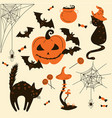 halloween cats and pumpkins trick or treat object vector image