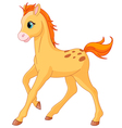 cartoon foal vector image