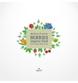 Banner with fresh berries Concept organic food vector image