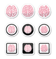 Human brain icons set - intelligence creativity c vector image vector image