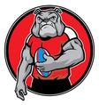 bulldog as rugby football player vector image