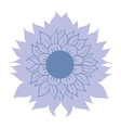 beautiful blue flower on white background template vector image