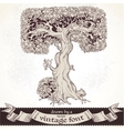 Fable forest hand drawn by a vintage font - T vector image